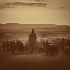 Who Is a Good Shepherd?